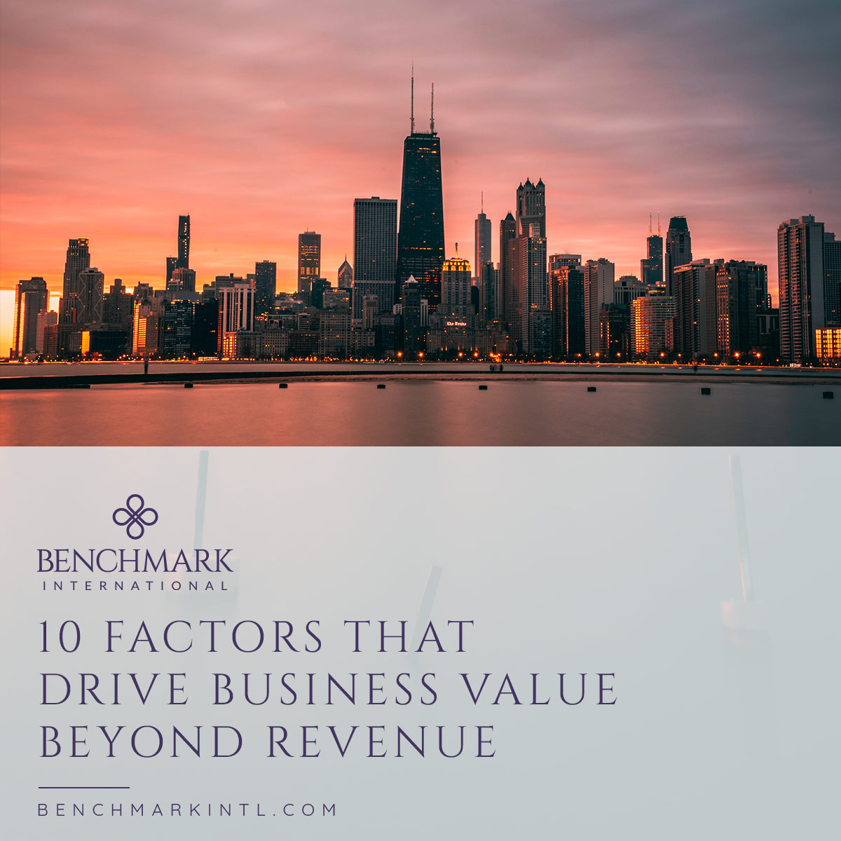 10_Factors_That_Drive_Business_Value_Beyond_Revenue_Social(3)