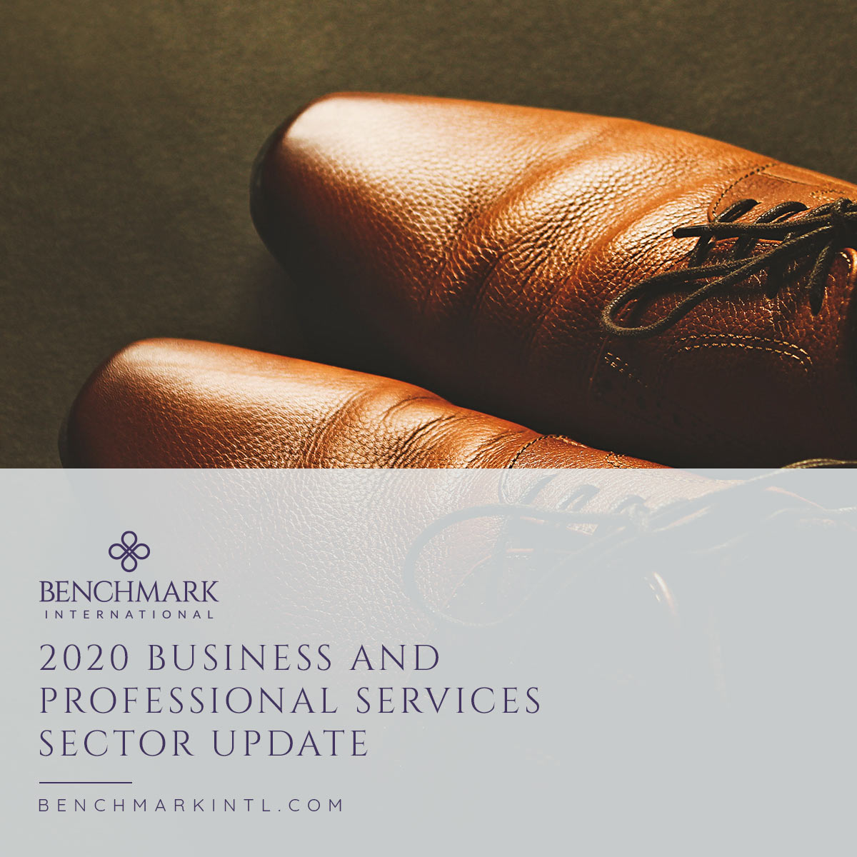 2020_Business_and_Professional_Services_Sector_Update_Social