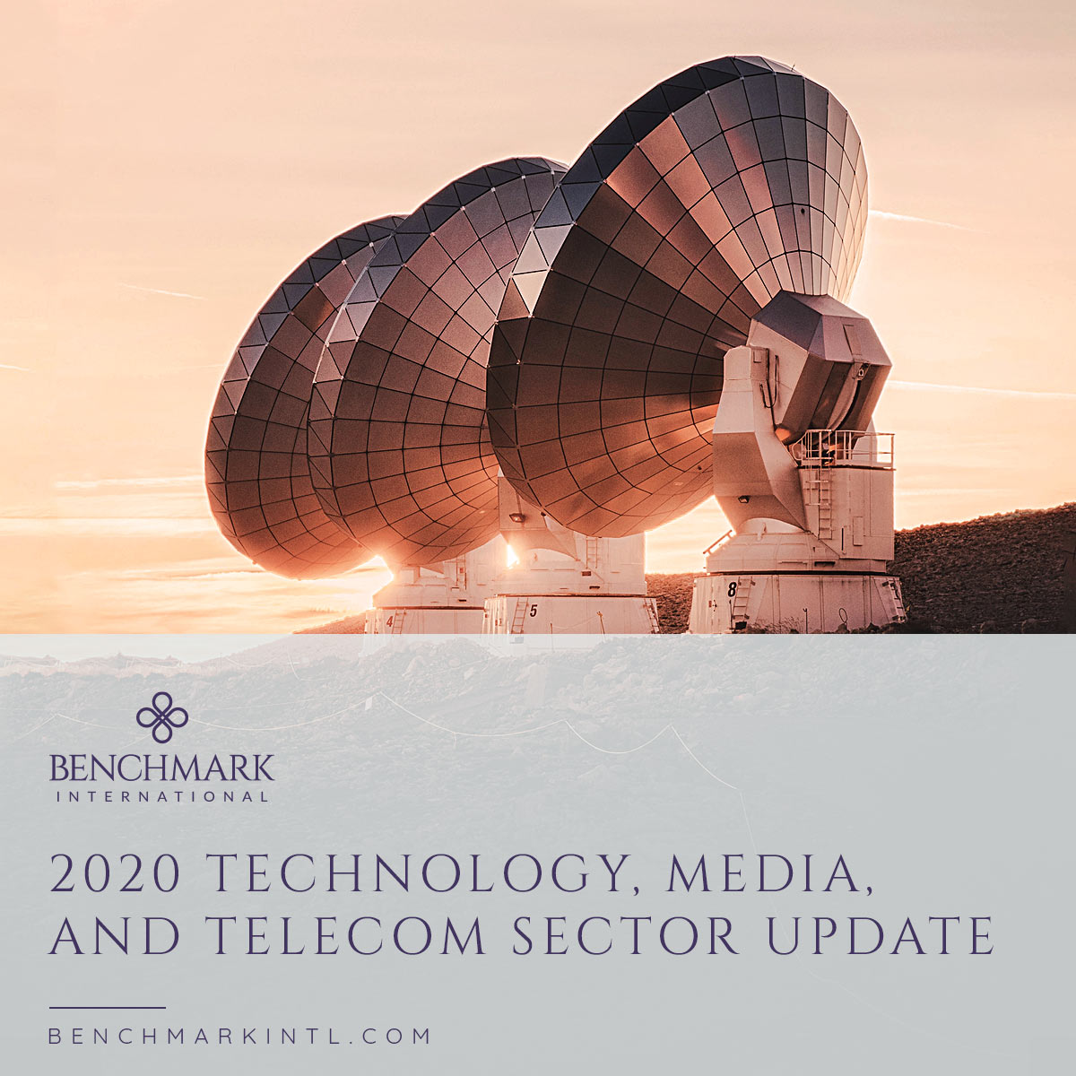 2020_Technology_Media_And_Telecom_Sector_Update_Social