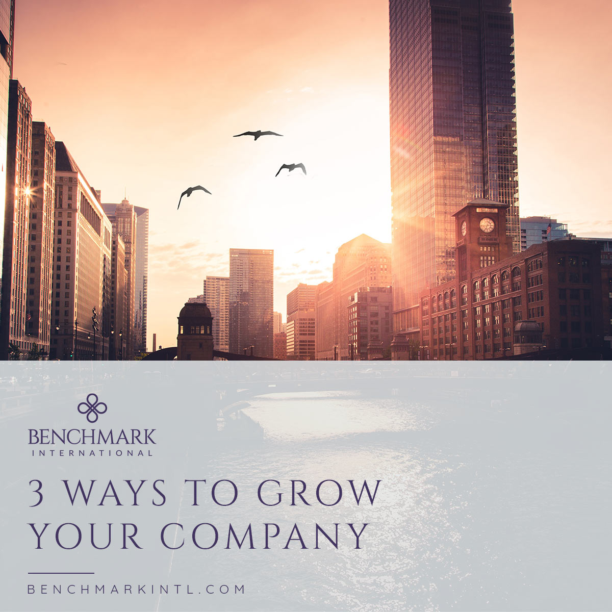 3_Ways_To_Grow_Your_Company_Social