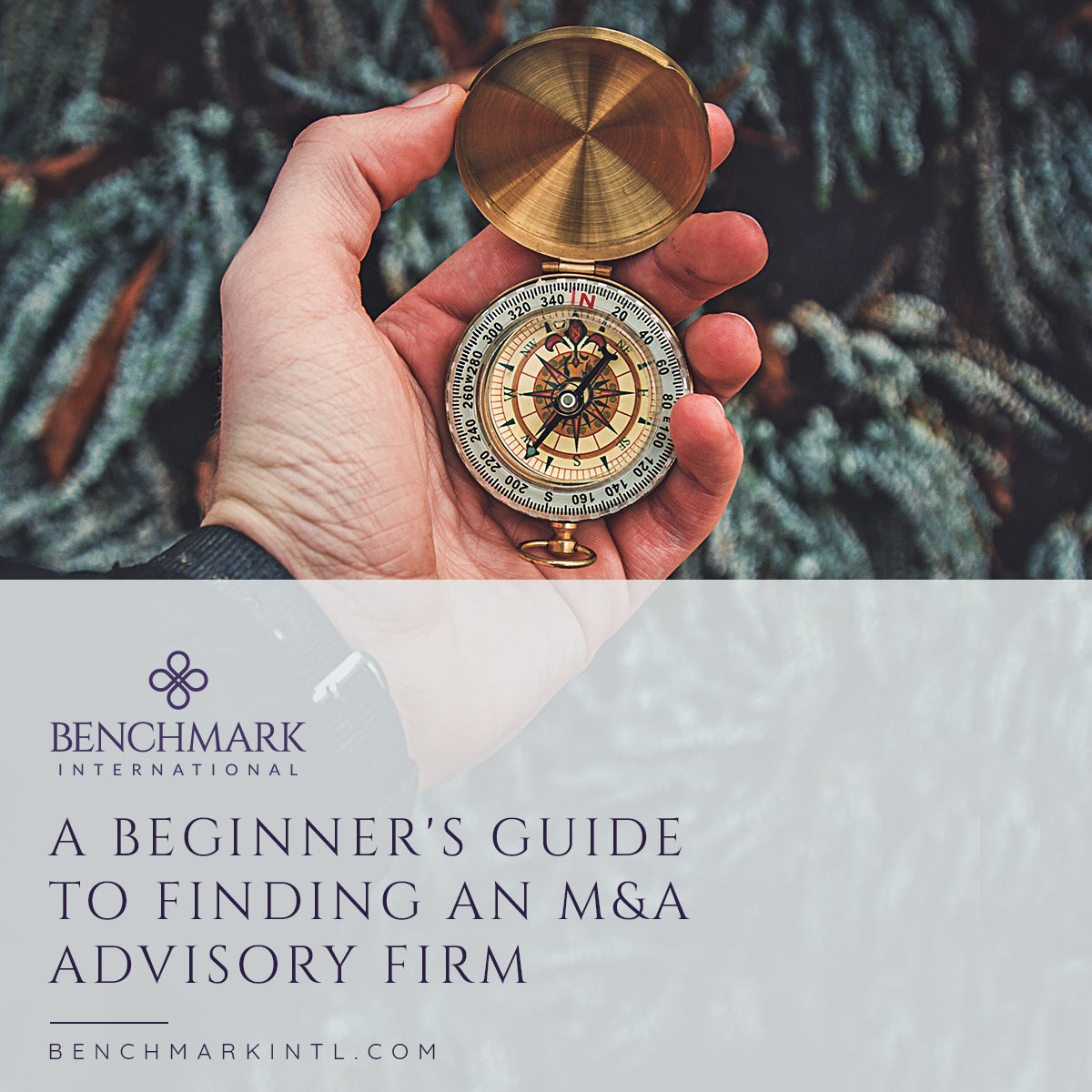 Beginners_Guide_To_Finding_An_M&A_Advisory_Firm_Social
