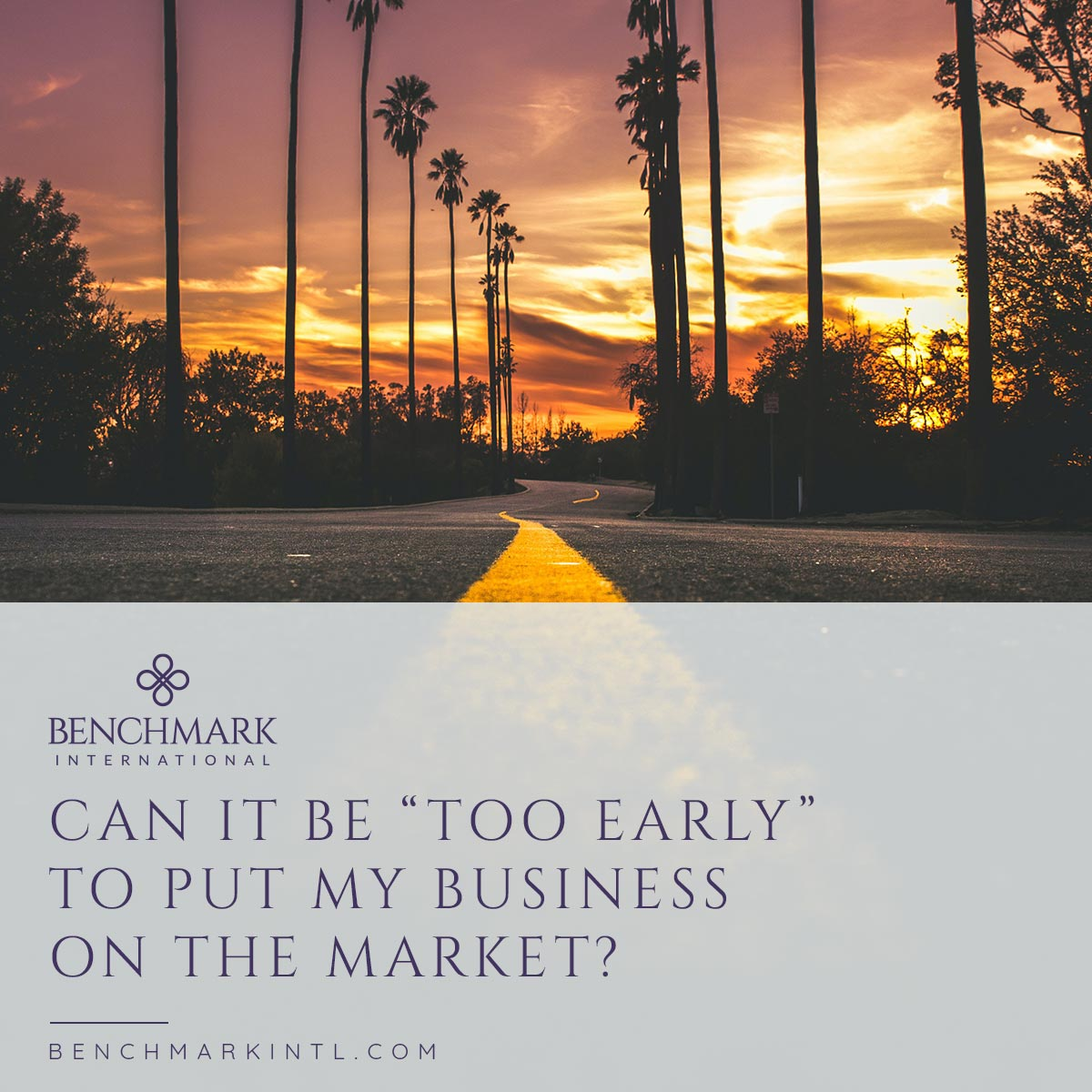 Can_It_Be_Too_Early_To_Put_My_Business_On_The_Market_Social
