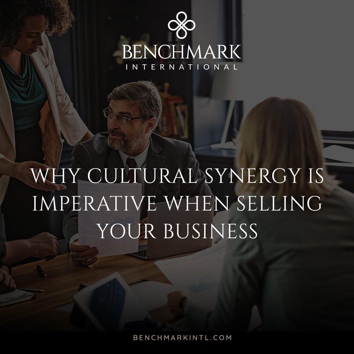 Cultural_Synergy-Social