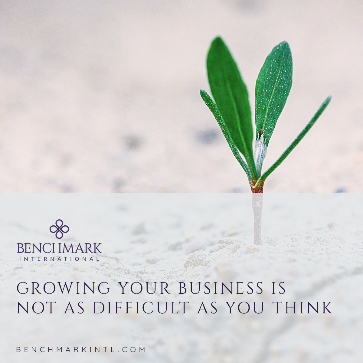 Growing_Your_Business__Not_As_Difficult_As_You_Think_Social