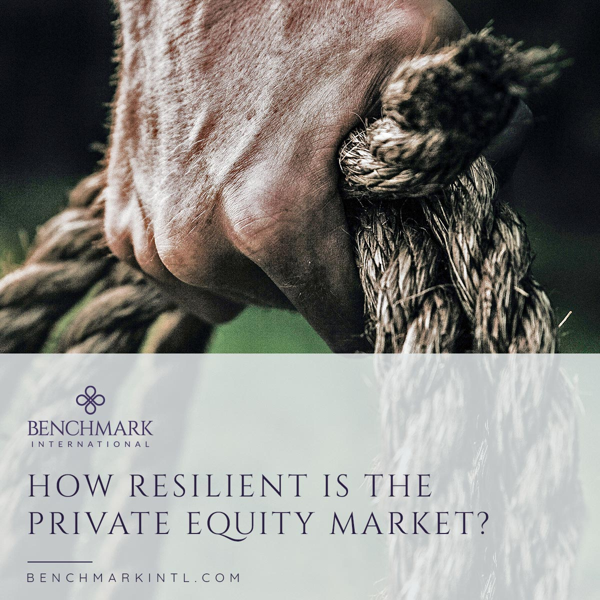 Private Equity Resilience Q1 2020