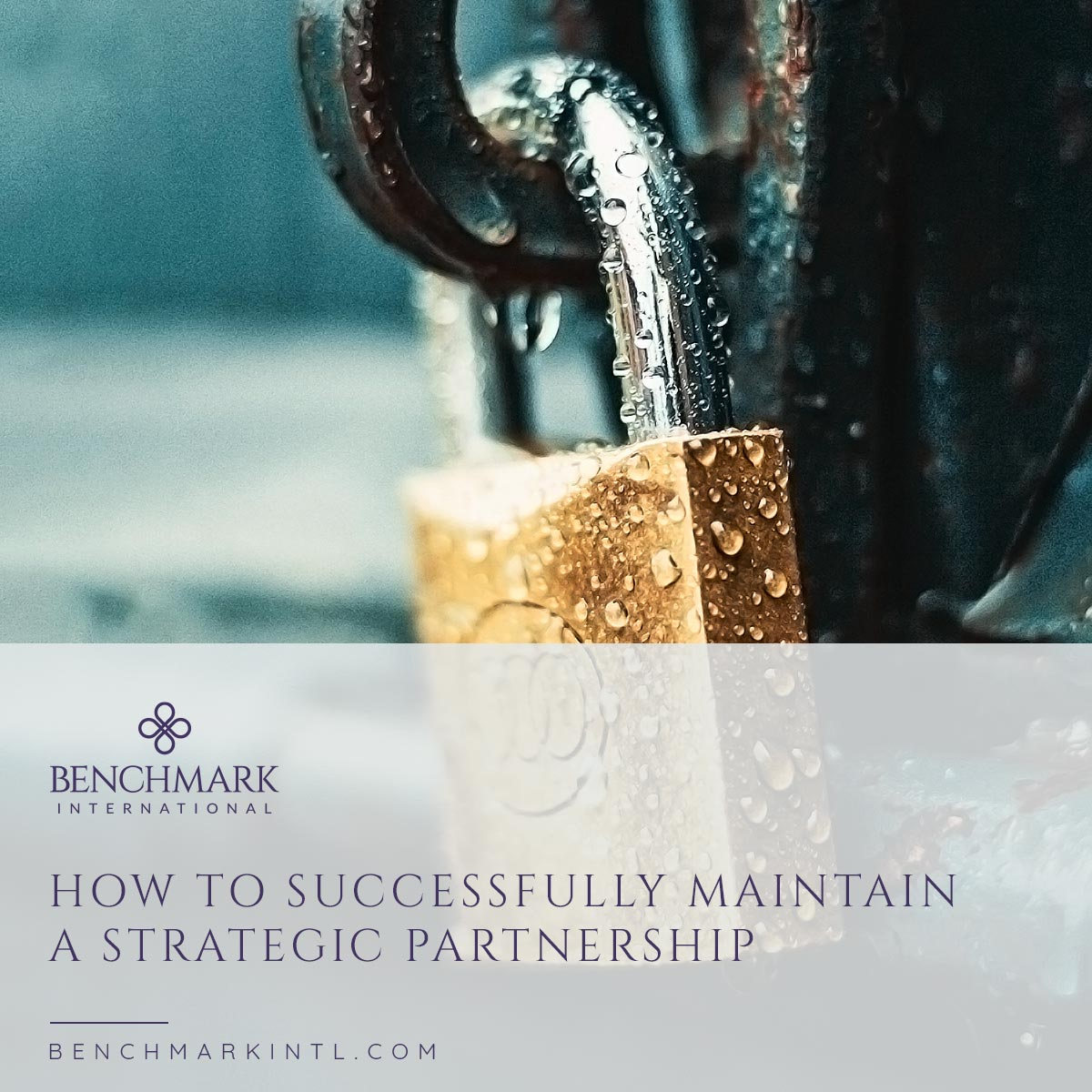 How_To_Successfully_Maintain_A_Strategic_Partnership_Social