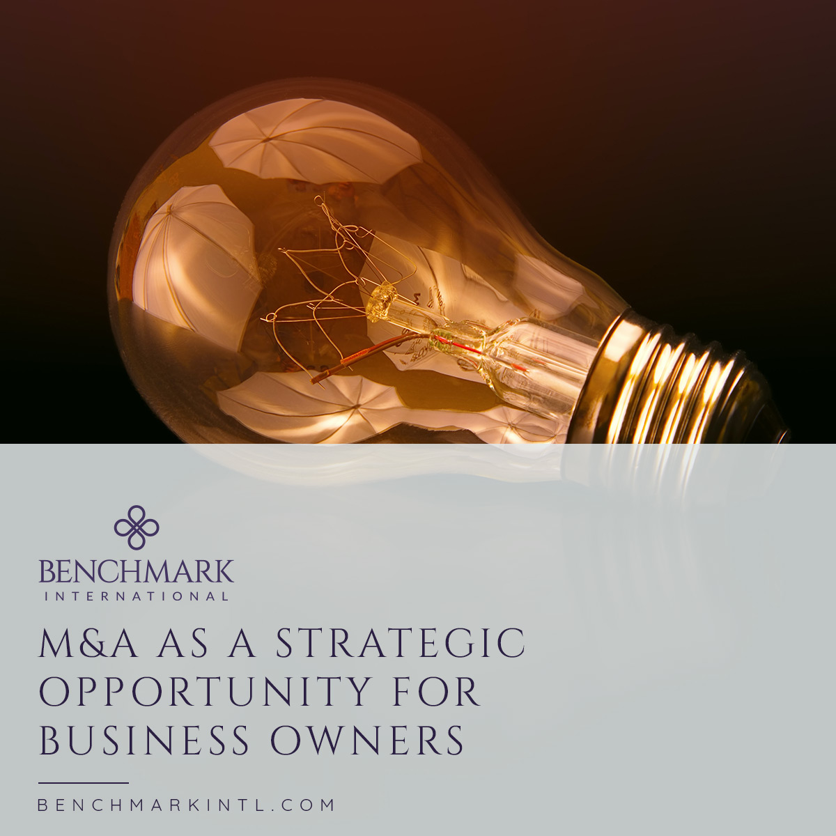 M&A_As_A_Strategic_Opportunity_For_Business_Owners_Social