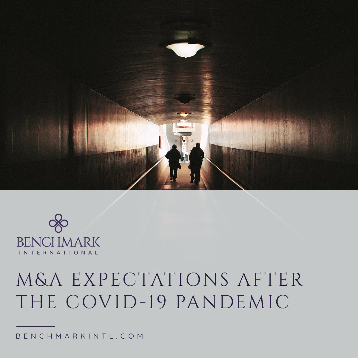 M&A_Expectations_After_The_Covid_19_Pandemic_Social(3)