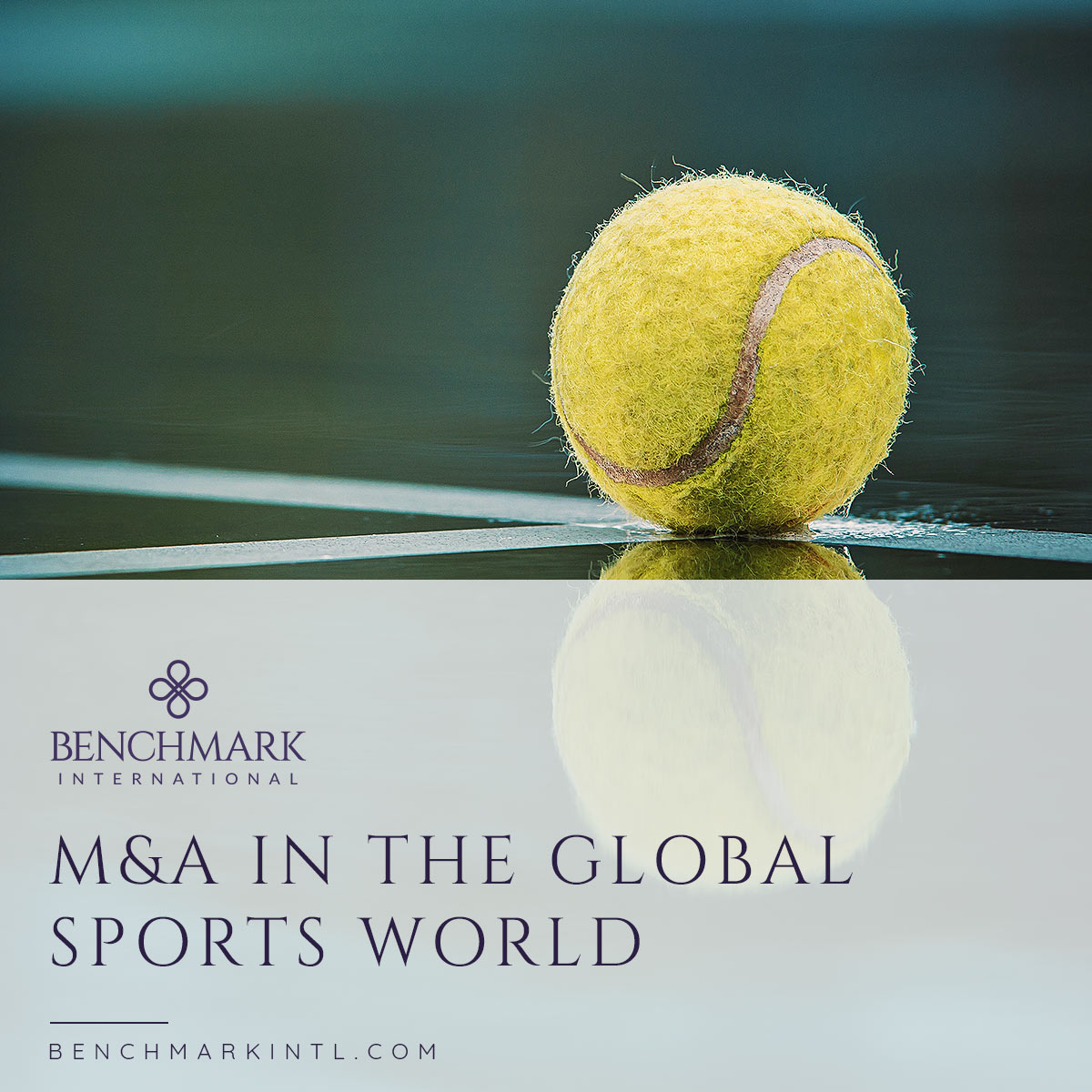 M&A_in_the_Global_Sports_World_social