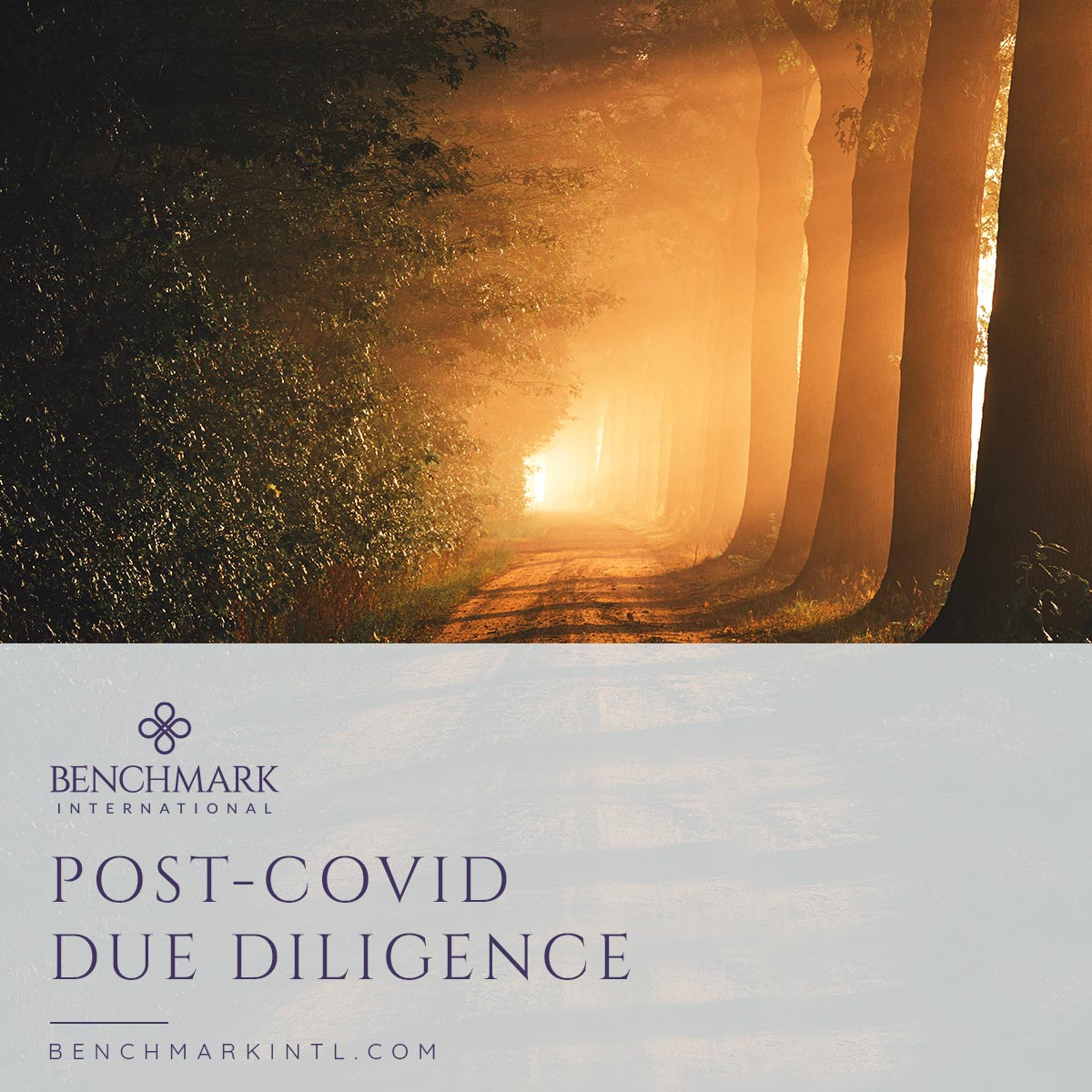 Post_COVID_Due_Diligence_Social