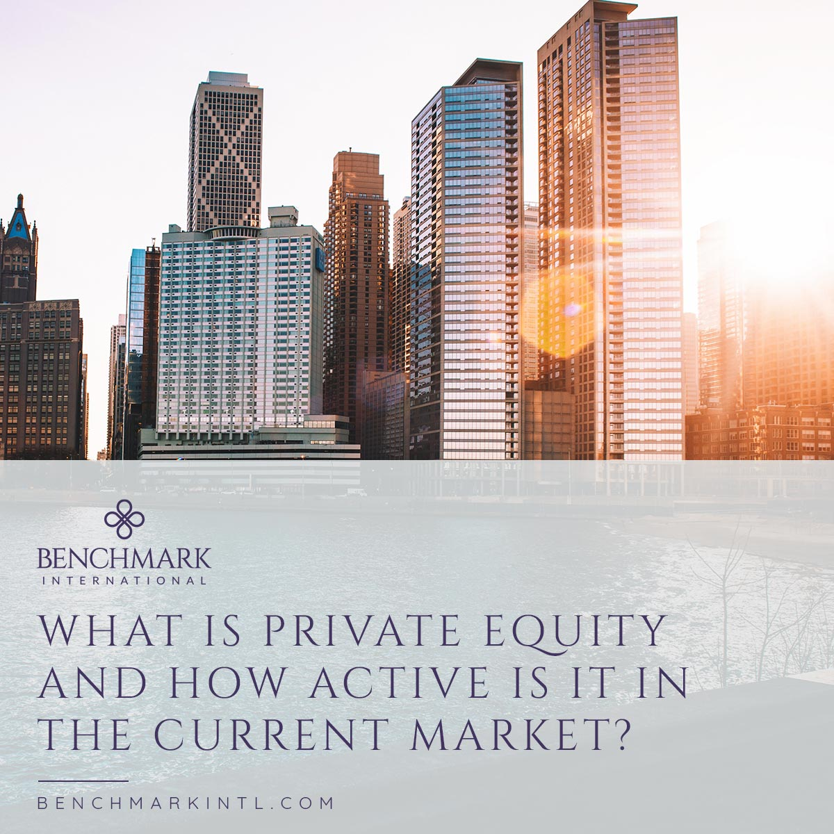 Private_Equity_Market_social