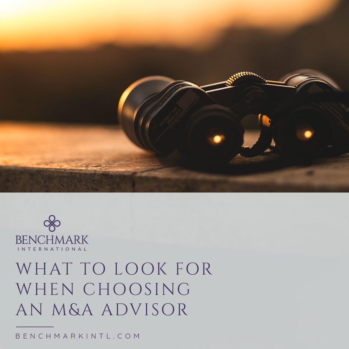 What_to_Look_For_When_Choosing_An_MA_Advisor_Social
