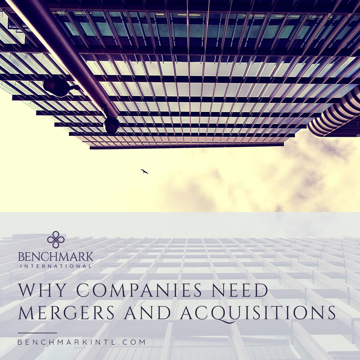 Why_Companies_Need_Mergers_And_Acquisitions_Social