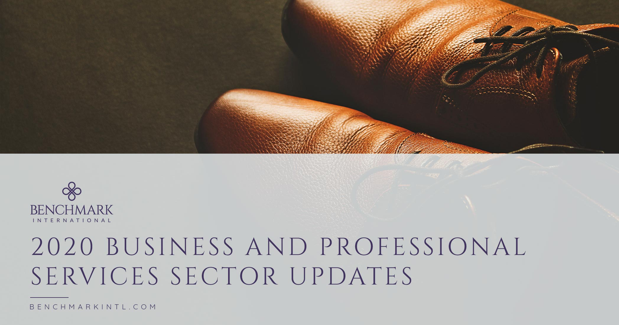 2020 Business And Professional Services Sector Update