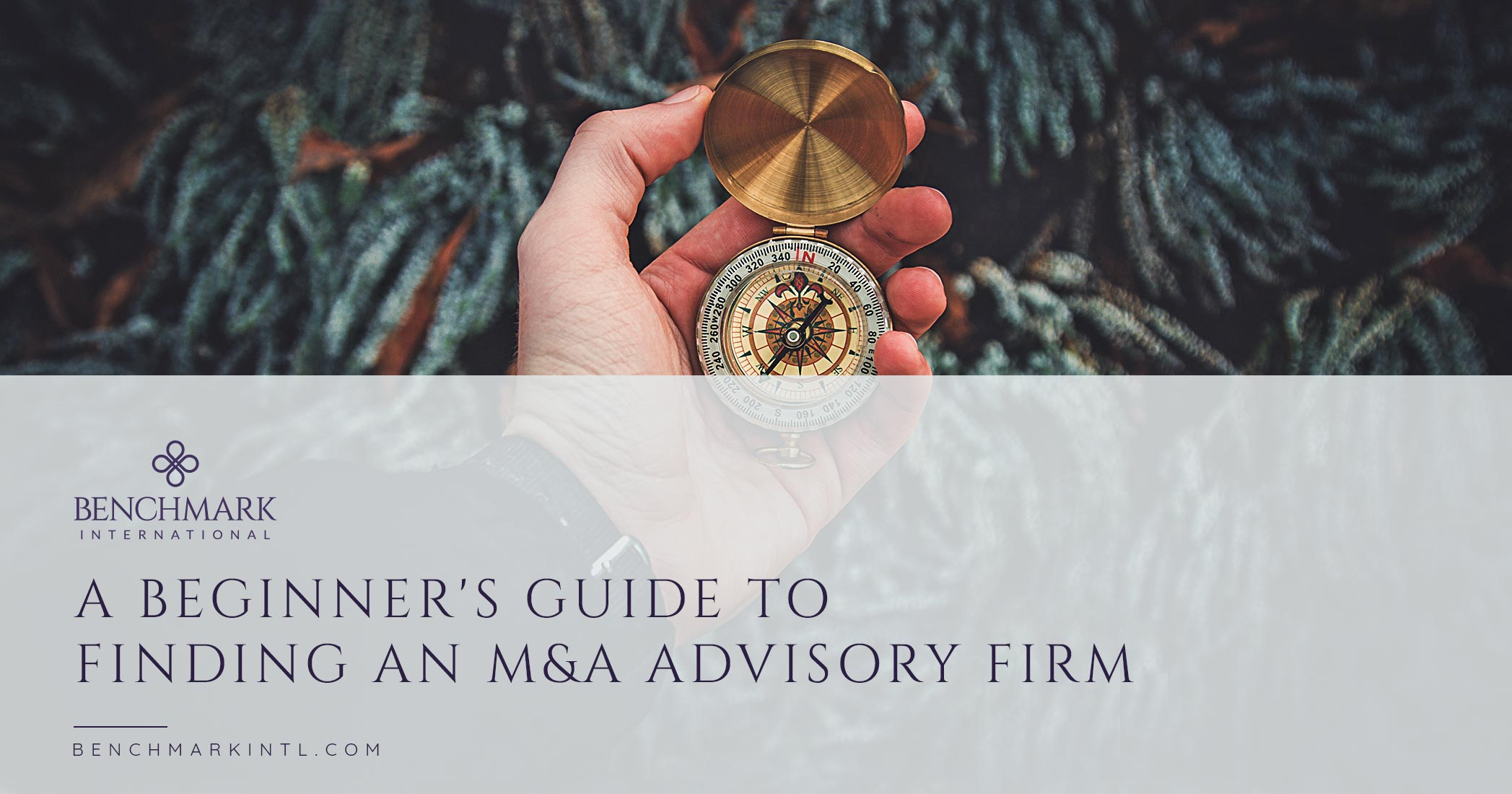 A Beginner's Guide To Finding An M&A Advisory Firm