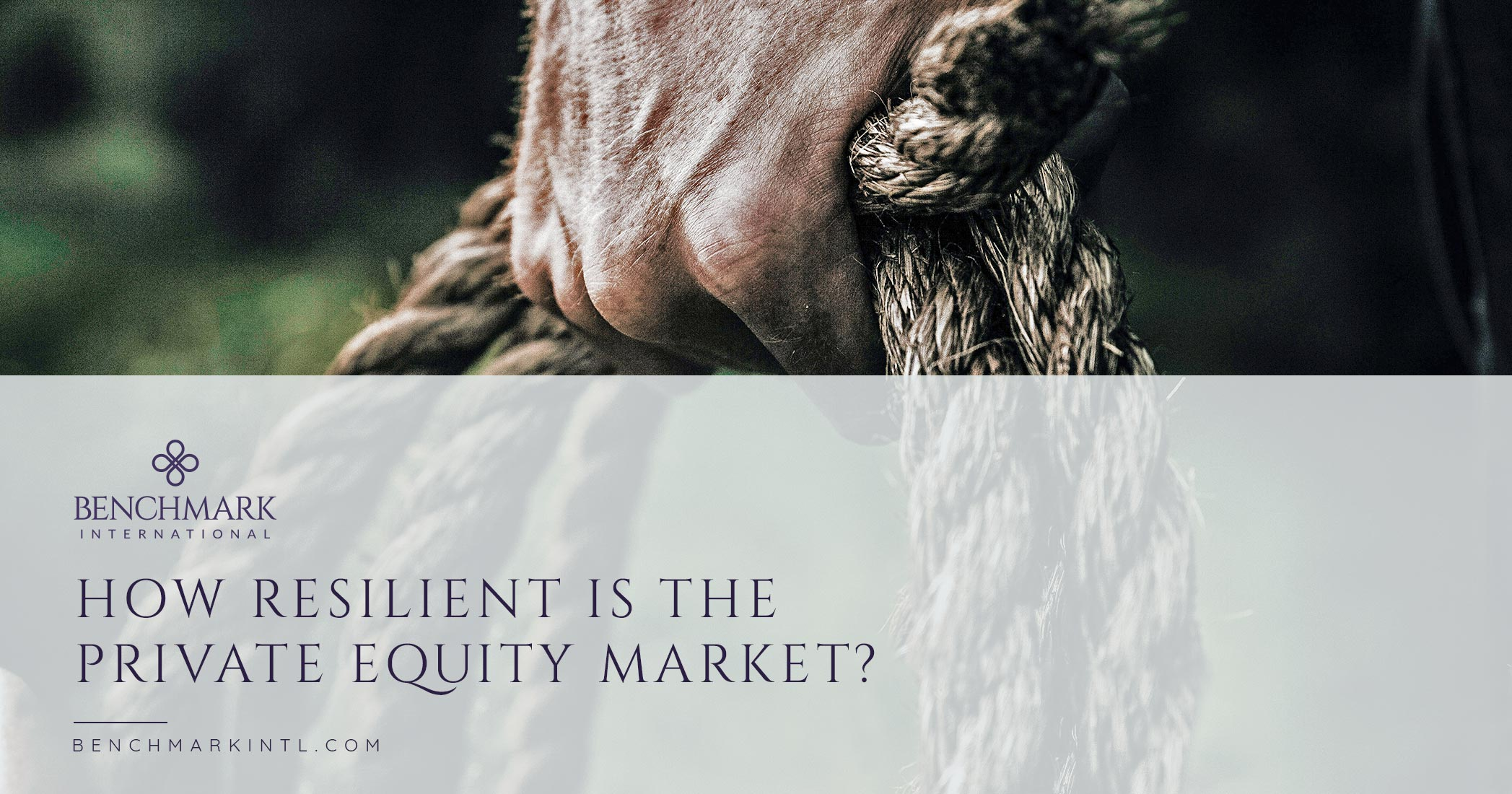 How Resilient is the Private Equity Market?
