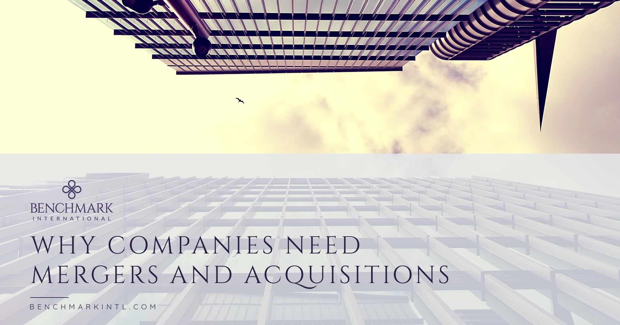 Why Companies Need Mergers and Acquisitions